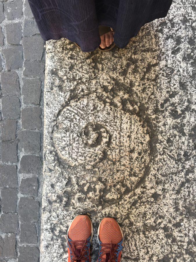 shell between feet